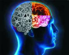 brain22